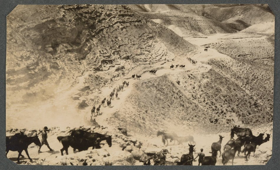 "Descending through the wilderness to Jericho, 1918. Auckland War Memorial Museum \u003ca href ="" https://www.aucklandmuseum.com/collections-research/collections/record/am_library-photography-16128\"" \u003e PH-ALB-214-p80-1 \u003c/a\u003e"