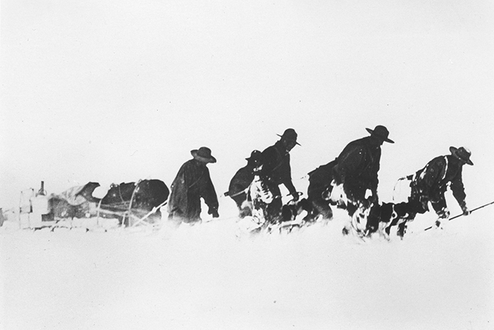C. R. Ford (ca. 1903) Men and dogs pull a sledge of supplies through snow and ice