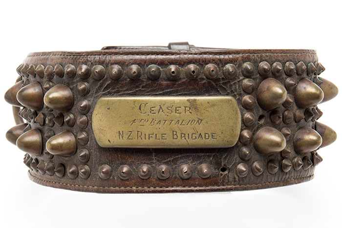 "Dog collar belonging to Caesar, mascot of A Company 4th Battalion N.Z.R.B. ""Ceasar\"""