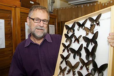 John Early is the Curator Entomology at Auckland War Memorial Museum.