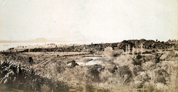 A view across Pukekawa to the harbour in the 1860s.